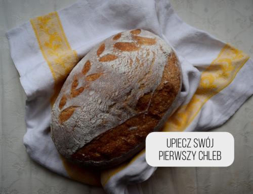 Gdzie w agroturystyce nauczysz się piec chleb?
