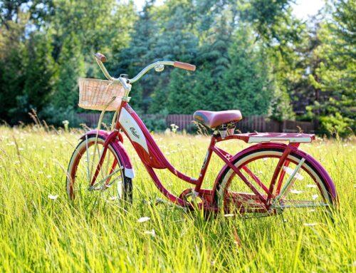 Rowerem na wsi – Szlaki rowerowe, które powinieneś znać